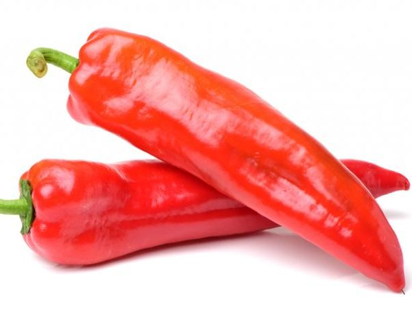 FRESH CAYENNE PEPPER (SHOMBO) - Mary's Croft