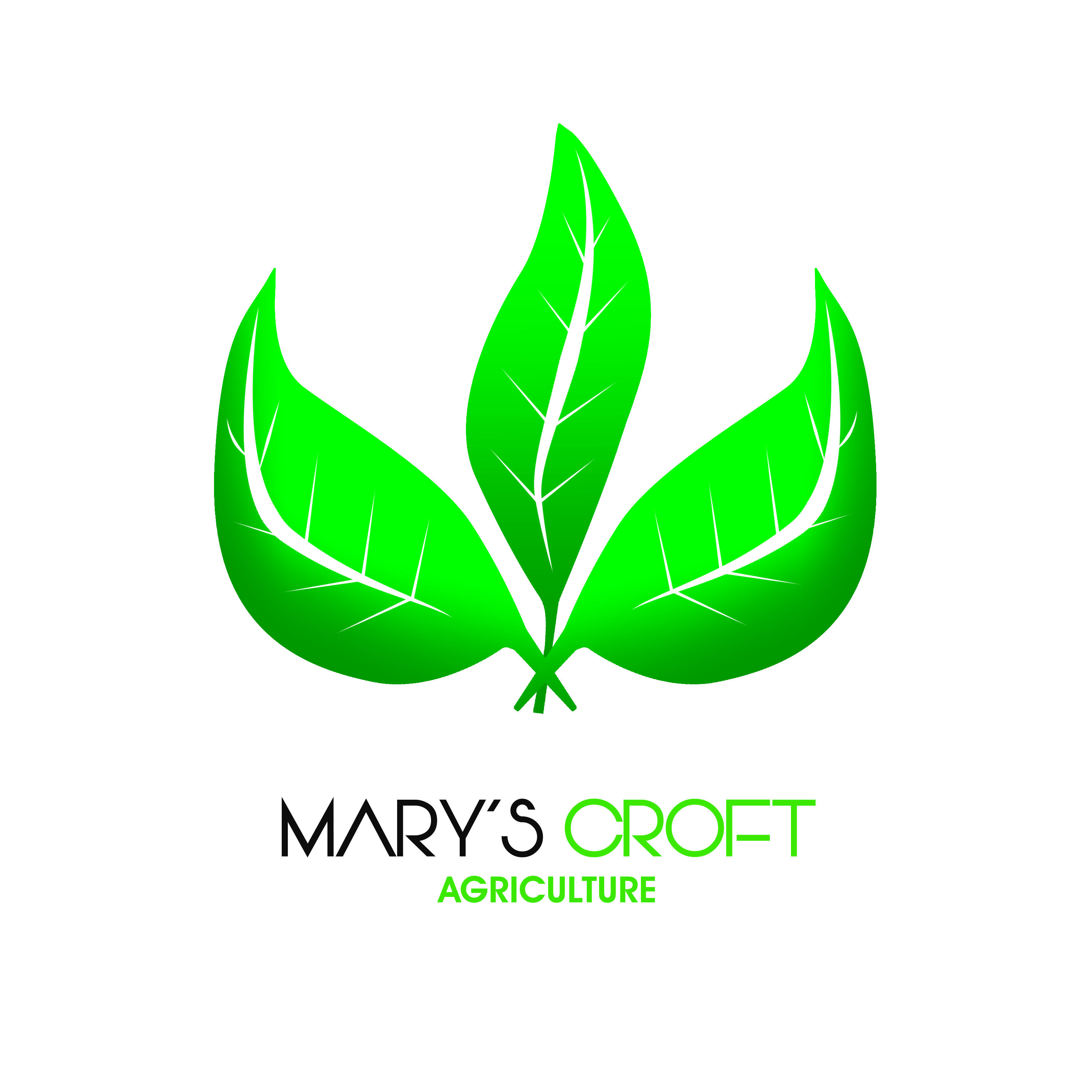 Mary's Croft